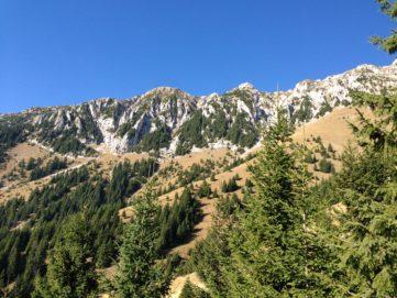 Alpinism în Visul Realității